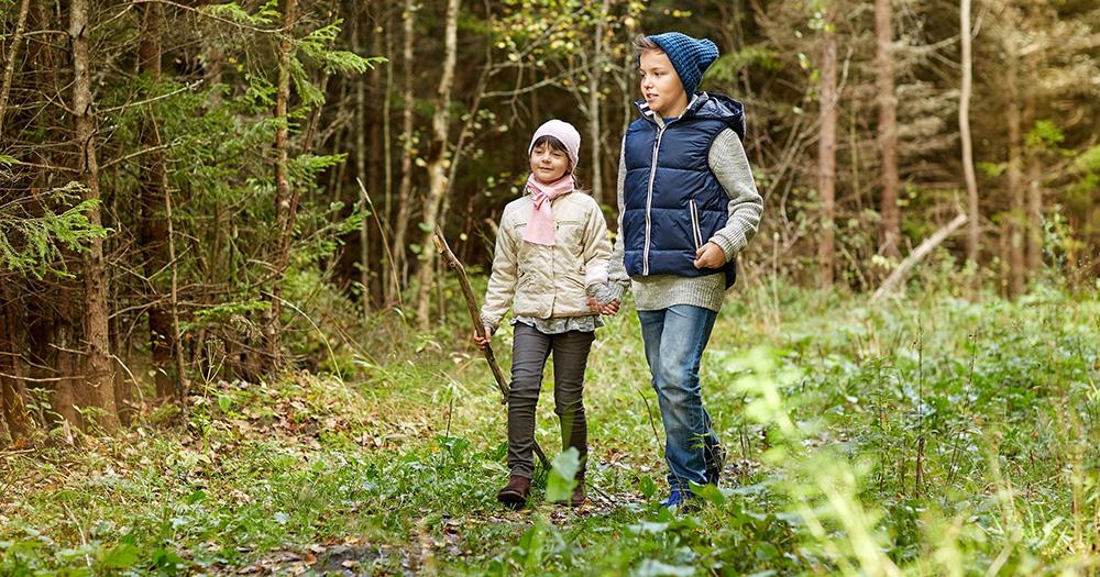 Konzeption und Umsetzungsplanung einer Bildung für Nachhaltige Entwicklung im Naturpark Dübener Heide
